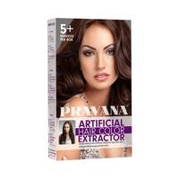 ChromaSilk Artificial Hair Color Extractor Kit