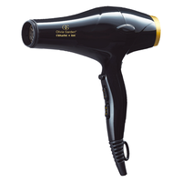 Ceramic+Ion Hair Dryer