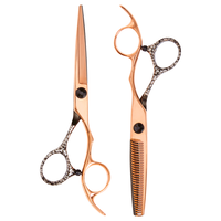 Salon Care Shear Set