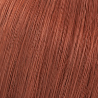 Wella Color Touch Auburn Shades